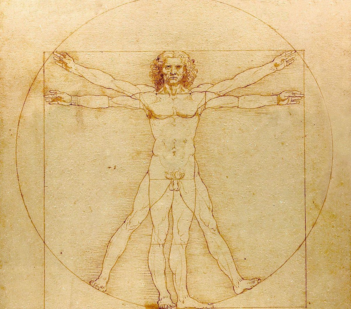 Vitruvianischer Mensch von Leonardo